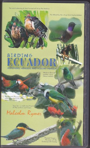 birding-ecuador-hummers-howlers-and-hissing-hoatzin