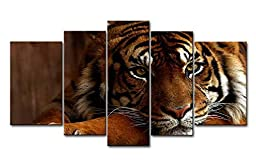 So Crazy Art 5 Piece Wall Art Painting Tiger Pictures Prints On Canvas Animal The Picture Decor Oil For Home Modern Decoration Print For Bedroom