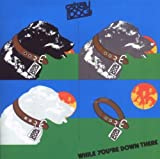 While Youre Down There (Expanded Edition) by Stray Dog (2009-11-03)