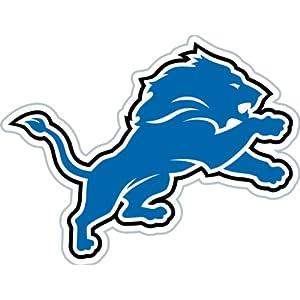 Amazon.com: NFL Detroit LIONS 12-Inch Vinyl Logo Magnet: Sports ...