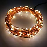 Warm White 10m 33Ft Copper Wire LED String Lights 100 LEDs Indoor and Outdoor Starry Lights for Festival Christmas Wedding Party Decoration - 12V Power Adapter (10M Strip with Adapter - Warm White)