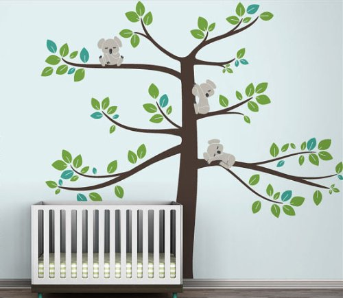 Baby Koala Images front-1046924