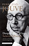img - for Despair Has Wings book / textbook / text book