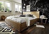 SAM-Rattanbett-Ngan-9135-160-x-200-cm-in-dust-Bett-in-natrlichem-Look-in-ausgefallenem-Design-angenehmer-Liegekomfort-widerstandsfhige-Oberflche