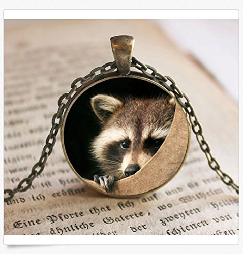 Raccoon Pendant/Necklace Jewelry, Raccoon Necklace Jewelry, Raccoon Photo