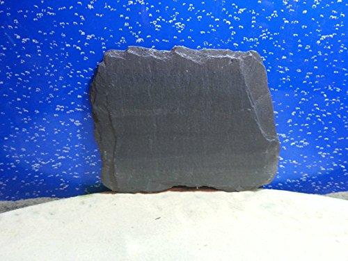fennstones-real-natural-flat-slate-stone-rock-piece-for-vivarium-tortoise-beak-lizard-claw-trim