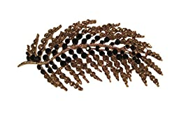 Fashion Jewelry, Palm Frond Pin with Black & Clear Rhinestones, 3 1/2 Inches