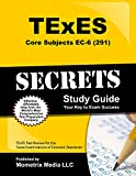 img - for TExES Core Subjects EC-6 (291) Secrets Study Guide: TExES Test Review for the Texas Examinations of Educator Standards book / textbook / text book
