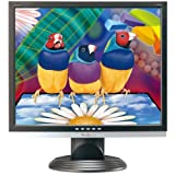 Viewsonic VA926G 19-Inch LCD Monitor with Digital and Analog Dual Inputs an ....