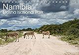 Schonnop Juergen Namibia Etosha National Park Tischka