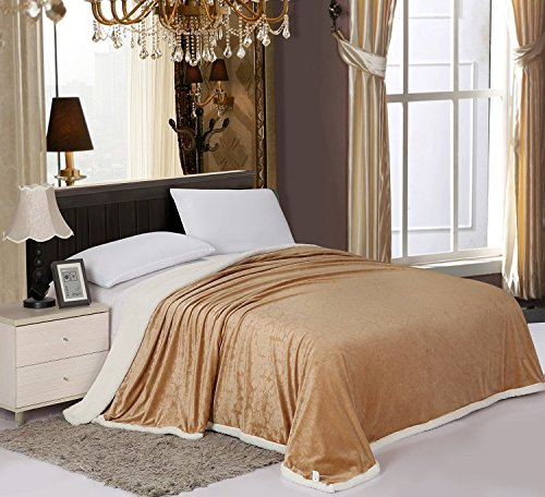 Elegant Comfort Sherpa Blanket on Amazon LUXURIOUS Micro-Sherpa Ultra Plush Blanket , Full/Queen, Mocha (Amazon Blankets compare prices)