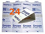 24 Brown Recluse Spider Traps | Traps Direct Advantage Spider & Insect Trap
