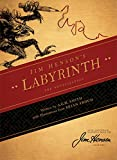 img - for Jim Henson's Labyrinth: The Novelization book / textbook / text book