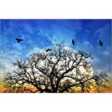 "Leinwandbild 60 x 40 cm: Vollmondbaum von Pirmin Nohr - fertiges Wandbild, Bild auf Keilrahmen, Fertigbild auf echter Leinwand, Leinwanddruckvon ""Pirmin Nohr"""