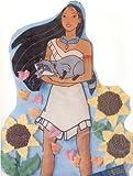 Wilton Disney's Pocahontas Cake Pan