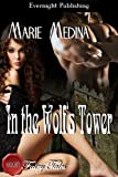 In the Wolf's Tower (Naughty Fairy Tales)
