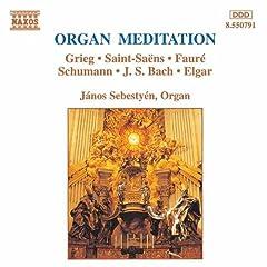 4 Lieder Op. 27, TrV 170 (arr. for organ): 4 Lieder Op. 27, TrV 170: No. 4. Morgen (arr. for organ)