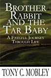 img - for Brother Rabbit and the Tar Baby: A Fateful Journey Through Life book / textbook / text book