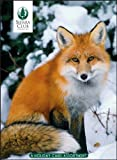 Winter Wildlife Boxed Holiday Cards