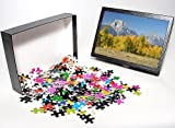 Photo Jigsaw Puzzle of Autumn colour on ...