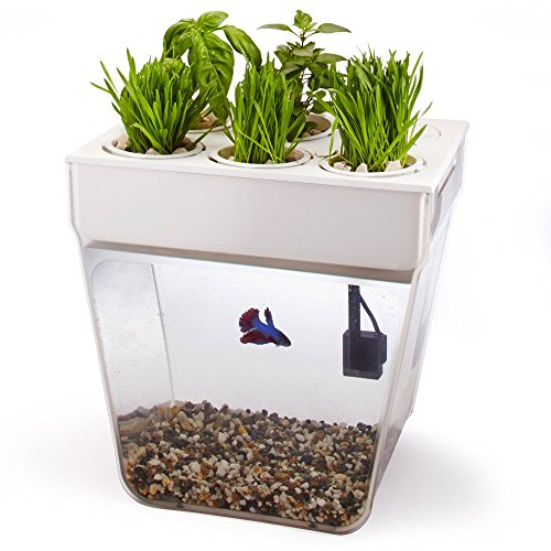 Miracle-Gro AeroGarden Sprout LED with Gourmet Herb Seed Pod