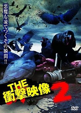 THE 衝撃映像2 [DVD]