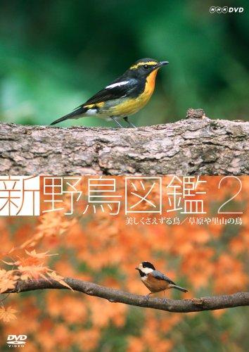 新 野鳥図鑑 第2集 美しくさえずる鳥/草原や里山の鳥 [DVD]
