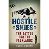 Hostile Skiesby David Morgan