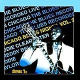 Chicago Blues Nights Vol. 2