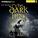 The Dark King: Fae, Book 2 (       UNABRIDGED) by C. J. Abedi Narrated by Emily Durante, Mikael Naramore