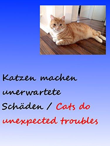 Clip: Katzen machen unerwartete Schäden / Cats do unexpected troubles