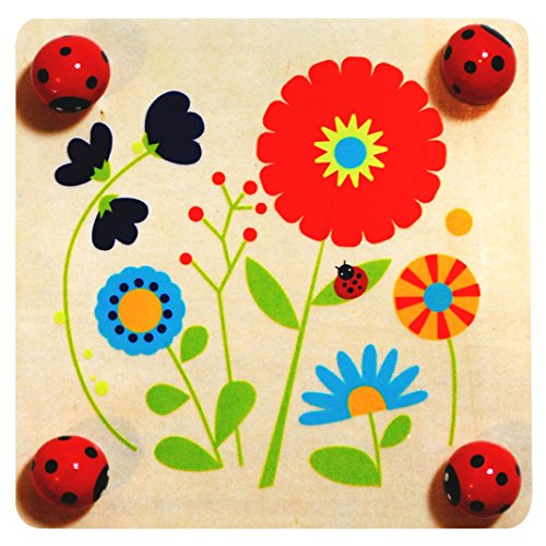 Sassafras Outdoor Fun! Flower Press Outdoor Play (Flower Press And Nature Cards compare prices)