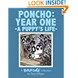 Poncho: Year One