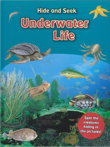 hide-seek-underwater-life-find-the-sea-creatures-hiding-in-the-oceans-rivers