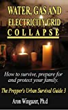Water, Gas and Electricity Systems Collapse.: How to Survive, Prepare for and Protect Your Family.The Preppers Urban Survival Guide (survival pantry, survival books)
