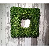 Mills Floral Boxwood Country Manor Square Wreath, 20-Inch