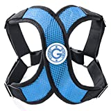Gooby 04111-SBLU-S Gooby Choke Free Perfect Fit X-Harness for Small Dogs, Sea Blue, Small