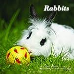 Rabbits Calendar - 2015 Wall calendar...