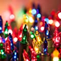 Holiday Living Multi-colored Christmas 100 mini lights Indoor/Outdoor String Lights