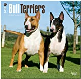 BrownTrout Publishers Ltd. Bull Terriers 2015 Wall Calendar