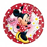 Minnie Mouse Party Plates (Pack Of 10)