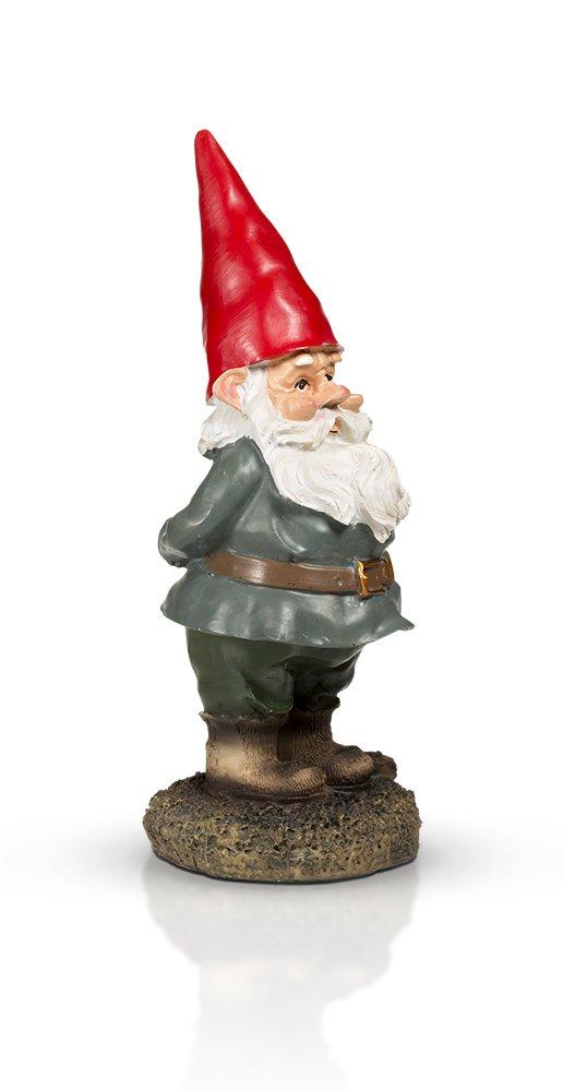 """THE Garden Gnome 10"""""""