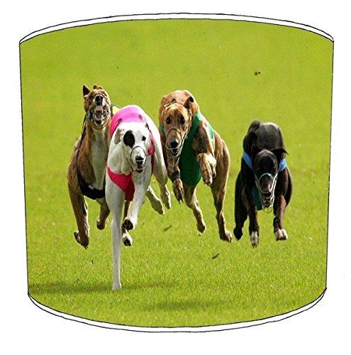 305cm-tabelle-greyhound-racing-lampenschirme-9