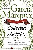 Collected Novellas (Perennial Classics (Paperback))