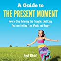 A Guide to the Present Moment Audiobook by Noah Elkrief Narrated by Stephanie Murphy