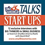 Smallbiz America Talks: Start Ups: 12 Expert Interviews with Experts in Small Business | David B. Wolf