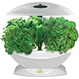 Miracle-Gro AeroGarden 7 Indoor Garden with Gourmet Herb Seed Kit, White