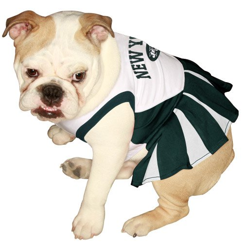 Pets First NFL New York Jets Dog Cheerleader Dress, Medium at Amazon.com