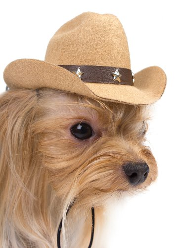 Cowboy Hat for Small Dogs – Tan
