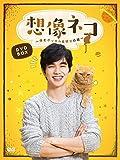 想像ネコ~僕とポッキルと彼女の話~ DVD-BOX[DVD]